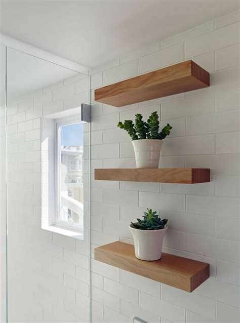 best plant for bathroom with no window plants in the bathroom home sweet home pinterest