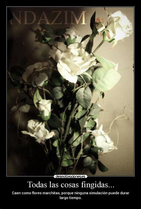 imagenes de flores marchitas im 225 genes y carteles de marchitas desmotivaciones