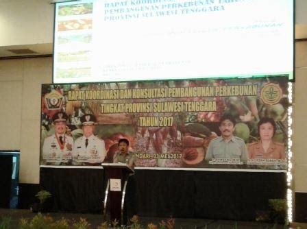 Fluktuasi Minyak Nilam perkebunan menjadi fokus perhatian dunia perkebunannews