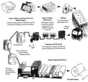 Paper Process Step By Step - recycling information vibrant recycle disposal