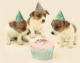 quot vintage puppy birthday card quot by micklyn redbubble