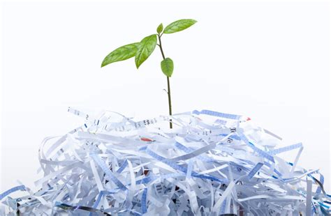 How To Make Money Recycling Paper - how would our be without paper