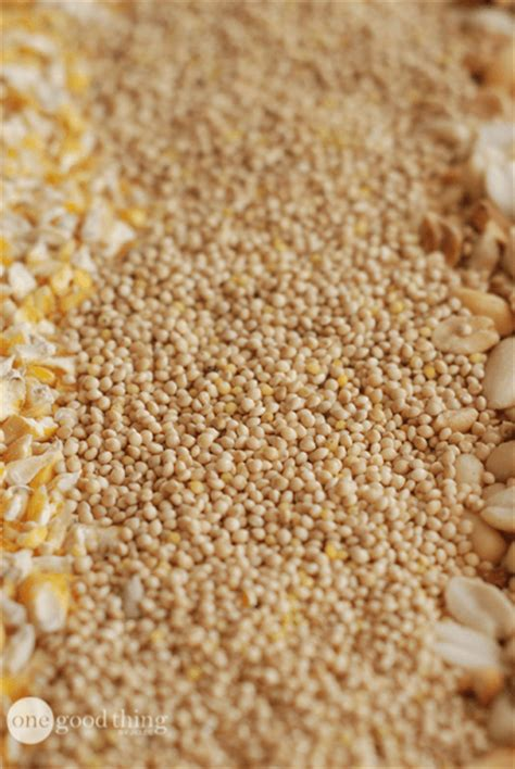 how to make your own customized bird seed blend one