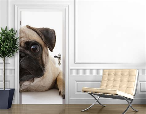 pug wallpaper for walls door photo wall mural pug wallpaper motif murals self adhesive puppy