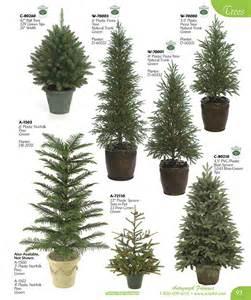 Evergreen tree chart school stuff pinterest evergreen trees and