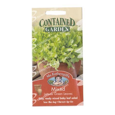 Promo Benih Selada Merah Lettuce Rosa Mr Fothergills Kemas benih lettuce green khusus pot 1000 biji mr fothergills bibitbunga