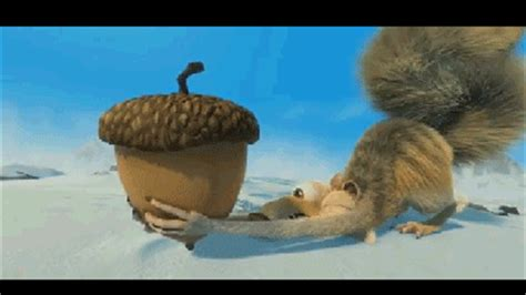 ice age gif find  gifer