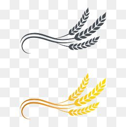 wheat png, vectors, psd, and clipart for free download