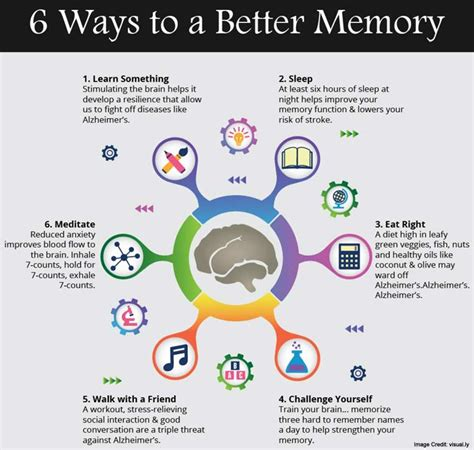 memory your brain the complete guide on how to improve your memory think faster concentrate more and remember everything books how to improve memory