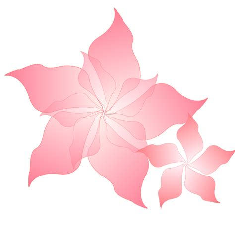 complementary of pink pink flower free vector 4vector