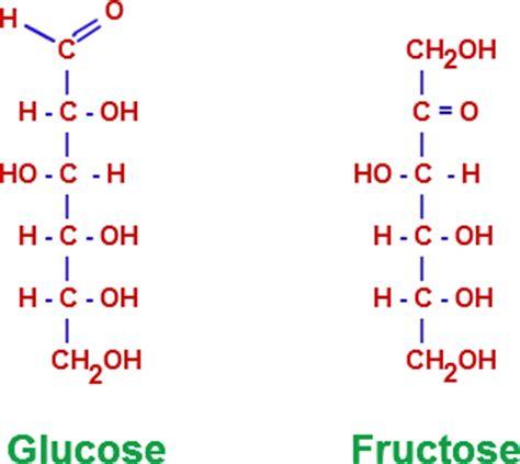 carbohydrates generally a molecular formula major bio molecule nutrition