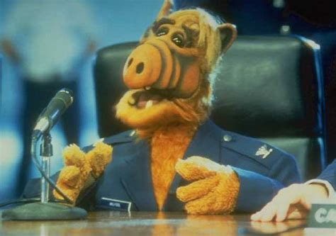 alf on fox newsthe oreilly factor marathon pundit o reilly factor welcomes alf back to
