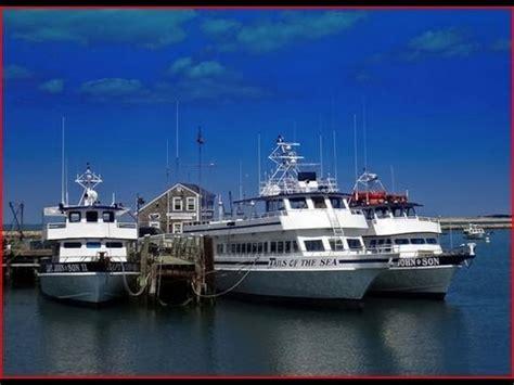 plymouth ma whale plymouth ma whale 2013