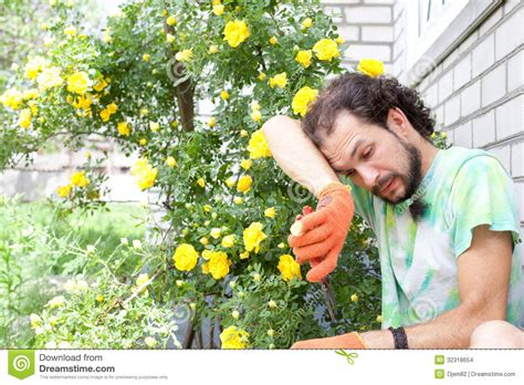 the backyard gardener tired cutting the stock photo image of botany