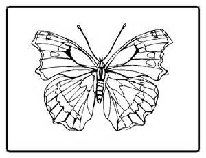 butterfly coloring pages for adults butterfly coloring pages for adults az coloring pages