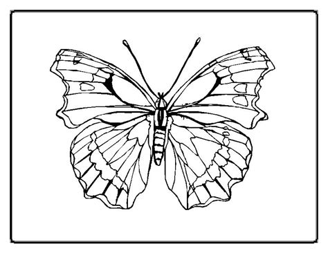 butterfly coloring pages for adults az coloring pages