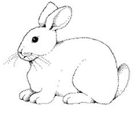 snow bunny coloring pages 1000 images about bunnies in the snow on pinterest