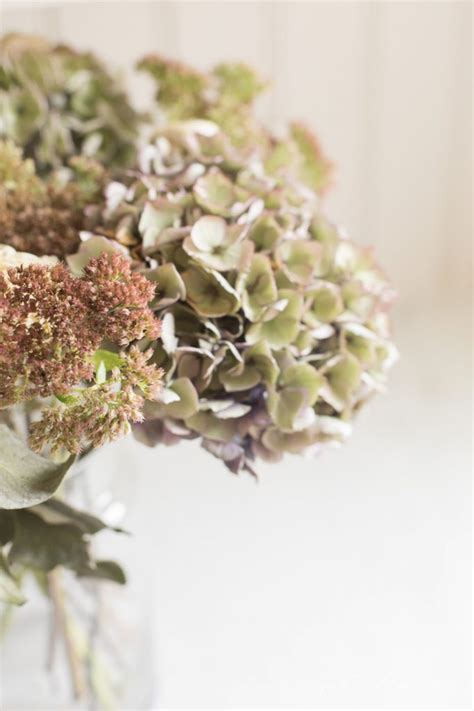 Dried Flowers by Decorating With Dried Flowers How To Flowers And
