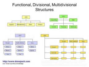 functional divisional multidivisional structures diagram