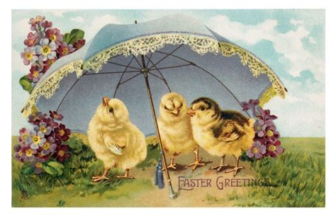 easter vintage chicks card  stock photo public domain pictures
