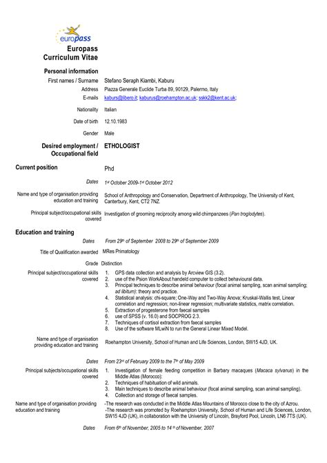 european cv sles cheap resume paper 28 images retail store manager