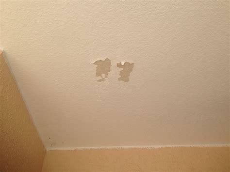 rockledge exterior repaint ceiling 007