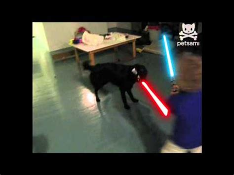 Lightsaber Meme - lightsaber duels video gallery sorted by comments