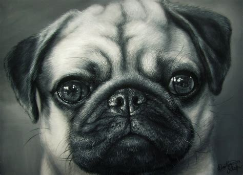 how to buy a pug pug painting by straewefin on deviantart