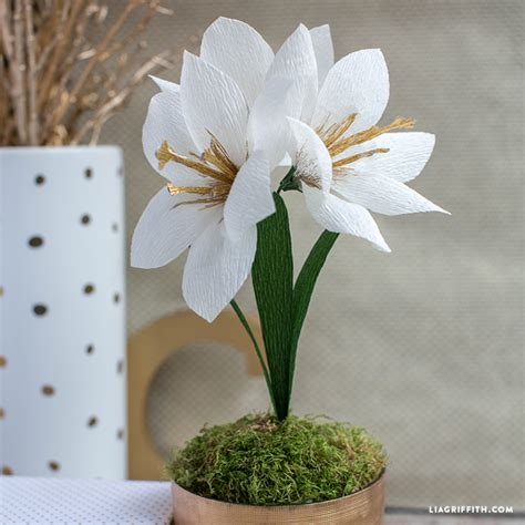 pattern crepe paper flowers diy crepe paper amaryllis lia griffith