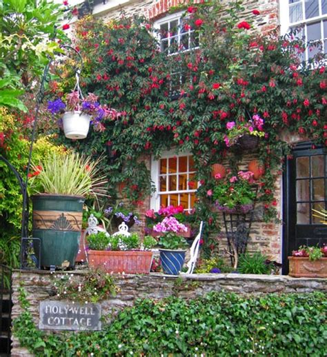 in a cottage garden quot cottage garden in st mawes cornwall quot by ware at