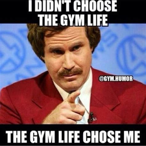 Gym Life Meme - i didnt choose the gym life the gym life chose me