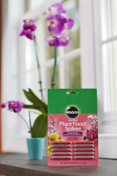 miracle gro orchid plant food spikes plant food