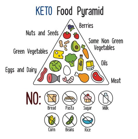 ketogenic diet beginners guide to keto lifestyle with 70 easy fast delicious recipes automatically reduce hunger burn excess make healthier and naturally lower your blood sugar books the ketogenic diet a beginner s guide to living well