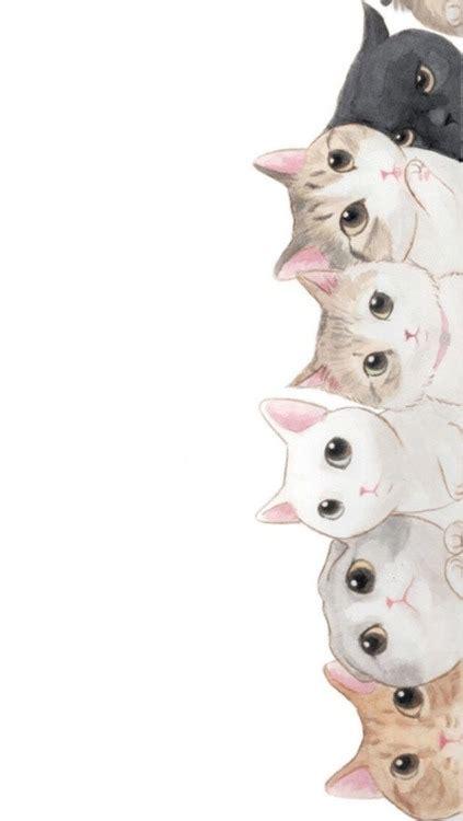 wallpaper tumblr cat cats wallpapers tumblr
