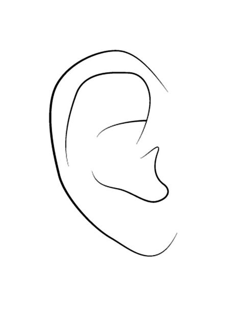 coloring page of the ear ear free coloring pages on art coloring pages