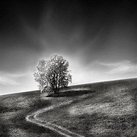 black and white landscape photography black and white landscape photography by andreu pardales