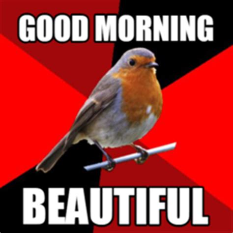Good Morning Beautiful Meme - retail robin hilarious pictures with captions
