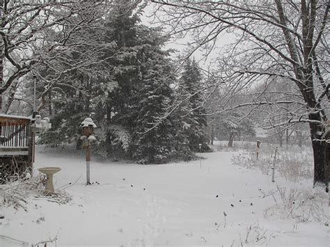 backyard snow backyard snow 28 images panoramio photo of backyard