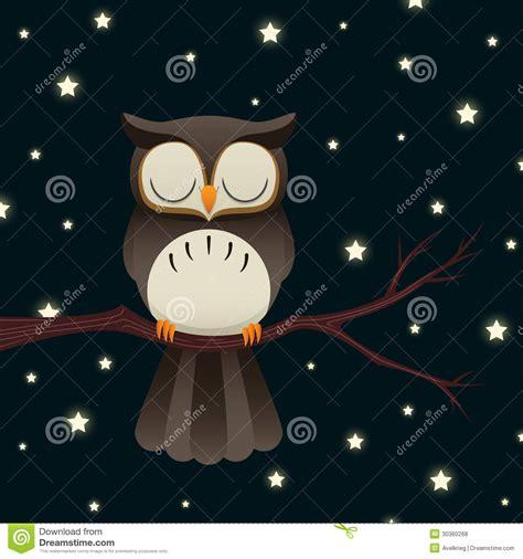 sleepy owl stock illustration illustration  branch