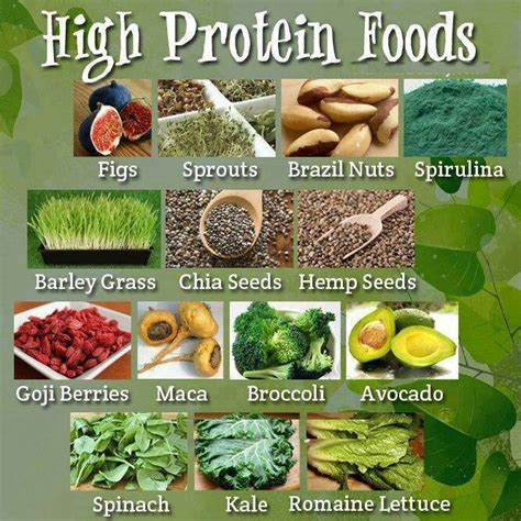The Best Diet Foods High In Protein by Diet For Healthy Nails 101 Nail Designs Mag