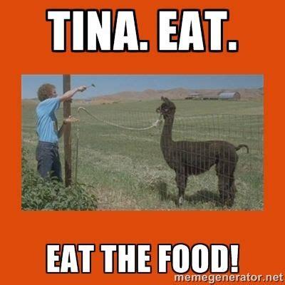 tina eat your food tina you fat lard funny pinterest laughing i love