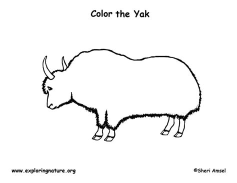 coloring pages yak yak coloring page