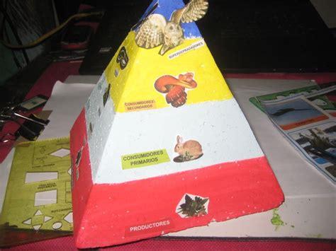 cadena alimenticia acuatica maqueta piramede alimenticia trofica maquetas pinterest