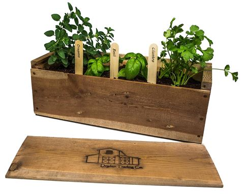 diy labeled indoor herb planters h o m e pinterest 35 housewarming gift ideas to stay ahead of the other
