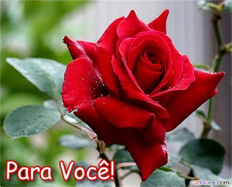 mensagens de rosas para facebook imagens recados e imagens de bom dia com rosas