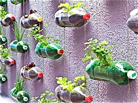 gardening using plastic bottles eylf pinterest view image using recycled bottles as hanging vases for vegetables or