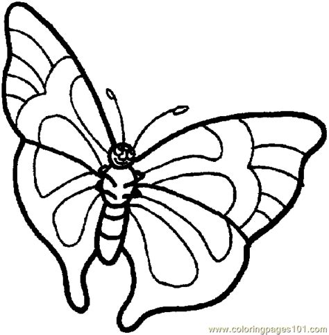 butterfly coloring page 020 coloring page free butterfly