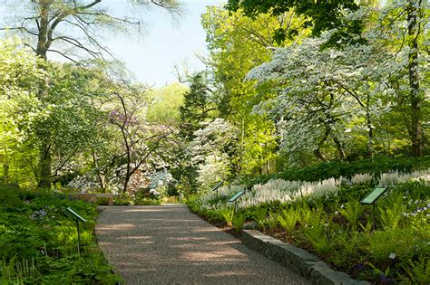 Ny Botanical Garden Address Wliw21 Member Day At The New York Botanical Garden Wliw21