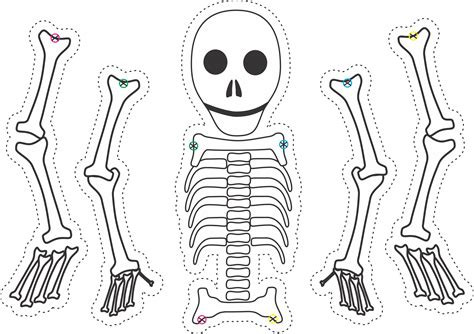 skeleton template to cut out ten spooky skeletons by hegarty rusling