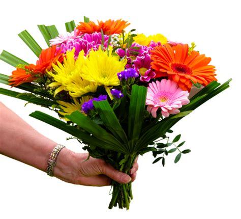 fiori regalo compleanno quali fiori regalare per un compleanno gnao net